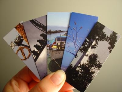 Moo Flickr Cards
