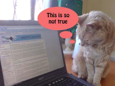 A comic cat comic 3