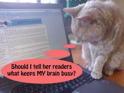A comic cat comic 5